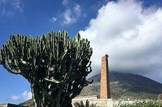 Sicilien - kunst og kultur