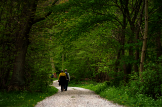 Pilgrimsvandring på Esrum kloster